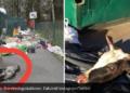 (Alle foto i artikkelen fra Samnytt.se).